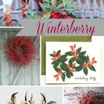 Inspiration from Anywhere... Winterberry