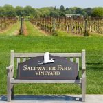 Inspiration from Anywhere...Saltwater Farm Vineyard in the Boston Globe!