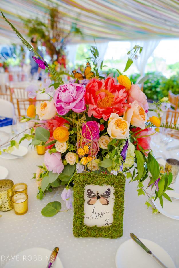 WEDDING1STROUND-01536